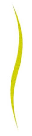 curve-vertical